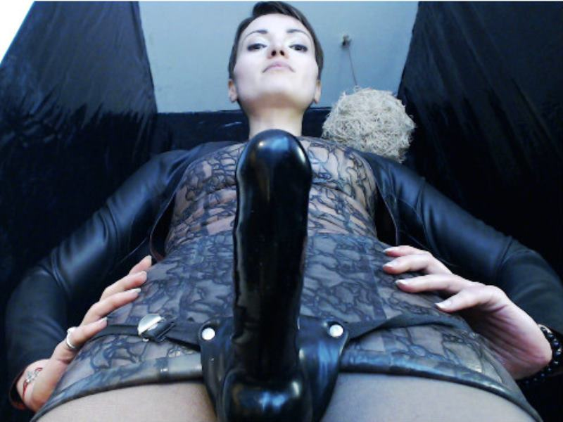 strap-on chat, strap-on cams